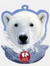 Polar Bear Bullish Display Bullish Made in Italy
