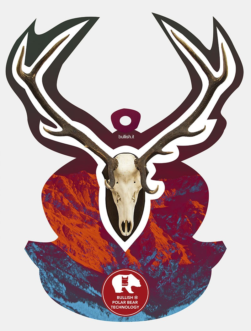 Deer Trophy Bullish Display