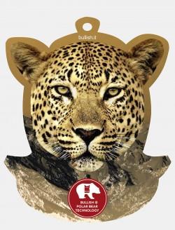 Cheetah Bullish Display Bullish Made in Italy